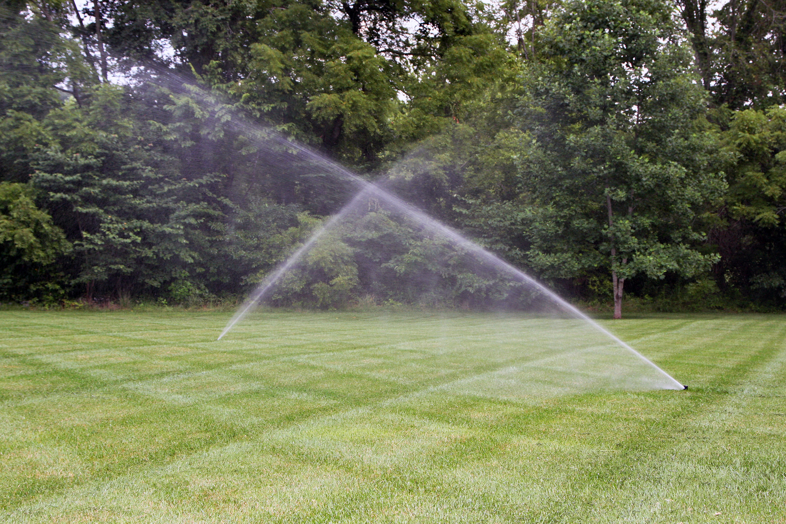 Lawn irrigation system with cross pattern of mowing.
